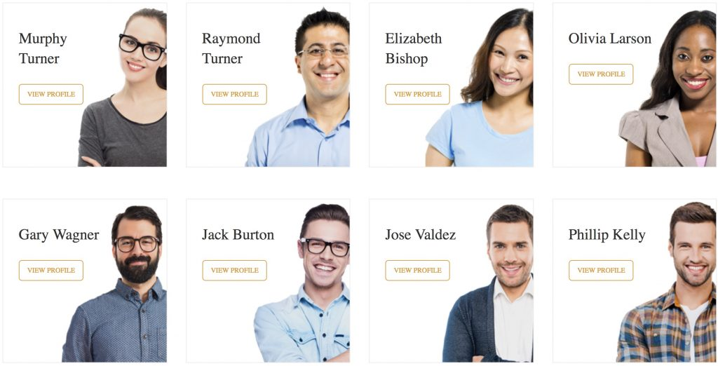 Sekolah theme - grid preview of teacher profiles.